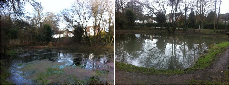 Bricky Pond clearance work, Chesham Bois