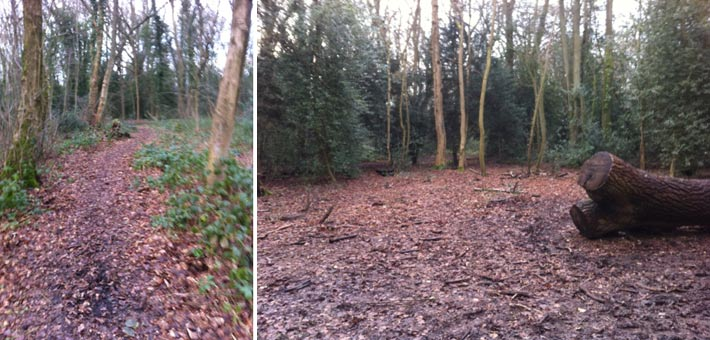 path clearance, chesham bois parish council
