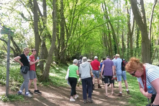 Chesham Bois Beating the Bounds Walk May 2016