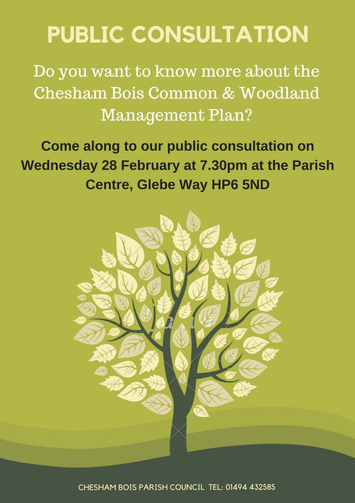 Woodland Management Consultation Poster